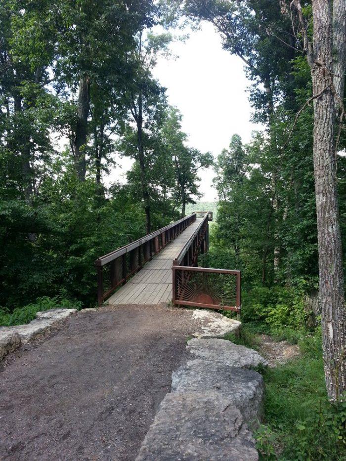 7. Bernheim Forest tree top boardwalk