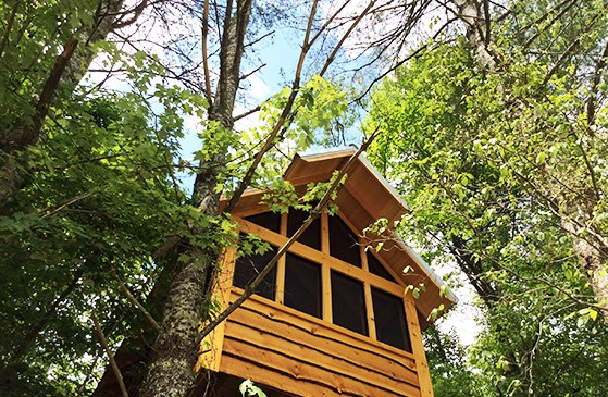 10. Stay the night in a luxury treehouse.
