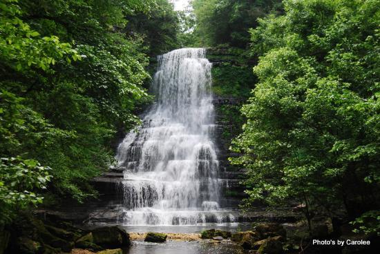7. Carmac Falls at Evins Mill