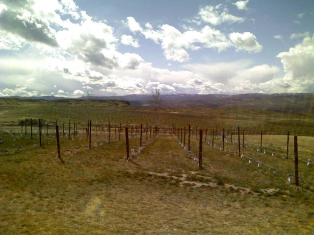 Cave B winery-2396343497