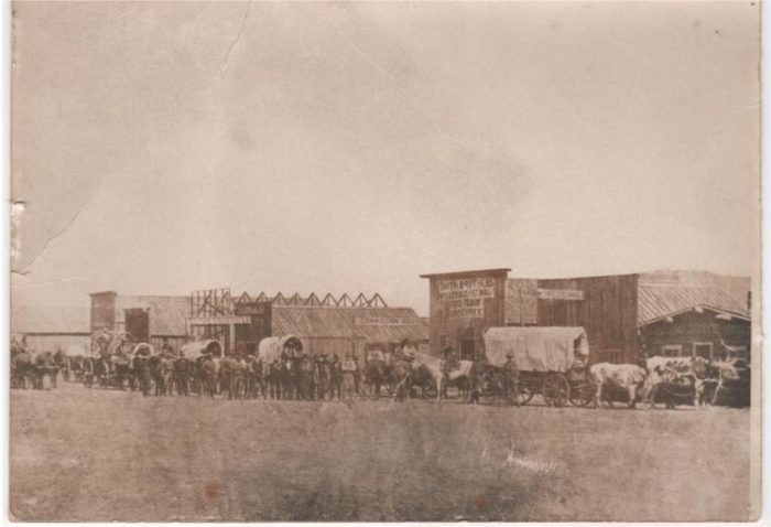 7. Freight team entering Custer, SD, 1876