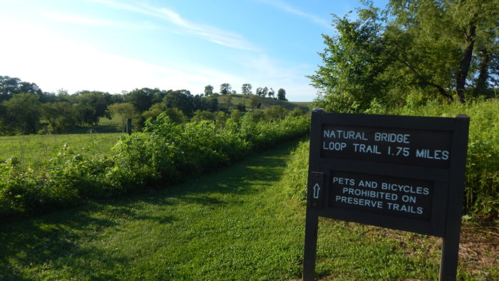 The Natural Bridge Loop Trail is less than two miles long, so it's perfect for a short day hike.
