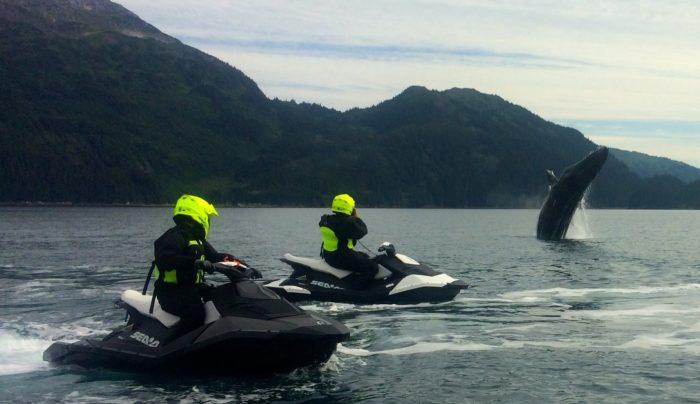 2. Watch whales breach via Jet Ski in Prince William Sound.