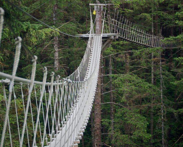 Alaska's Ultimate Canopy & Zipline Expedition – Juneau