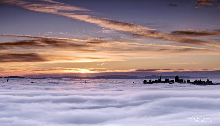 2. The Fog