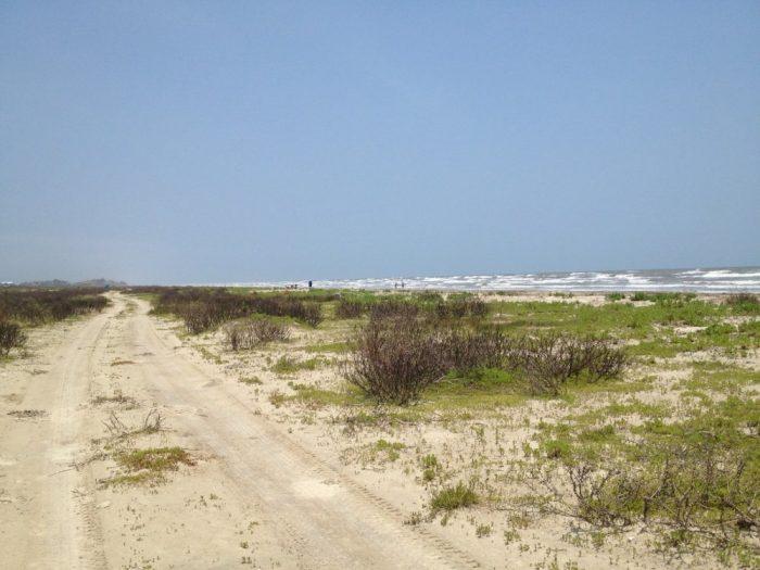 6. Galveston Island State Park