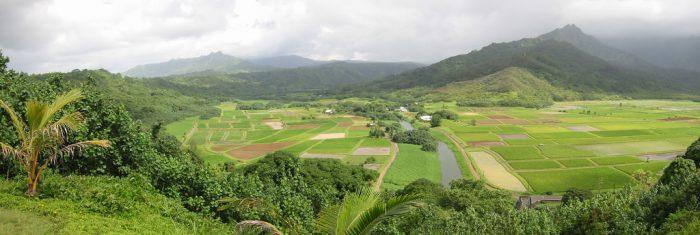 12. Hanalei Valley Lookout