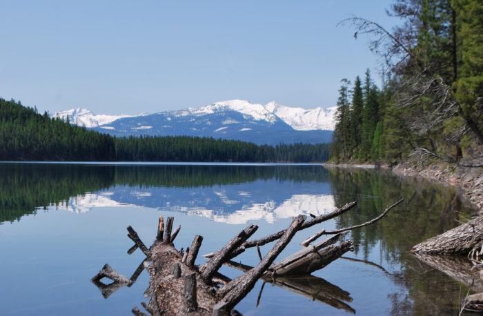 3. Holland Lake, Flathead National Forest