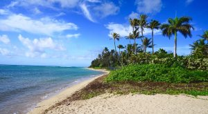 8 Of The Best Beaches In Honolulu To Visit This Summer