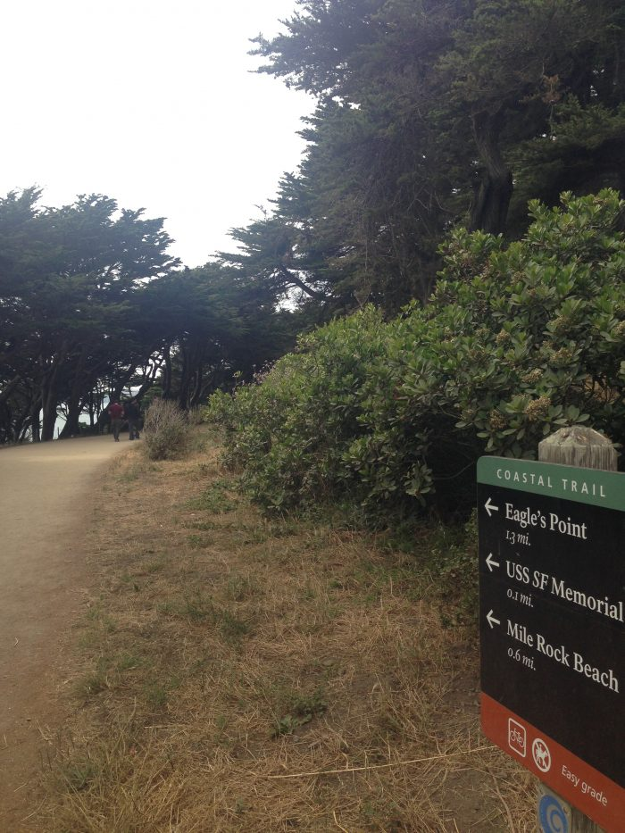 At the top of Sutro Baths, take the Coastal Trail leading towards Mile Rock Beach and Eagle's Point.