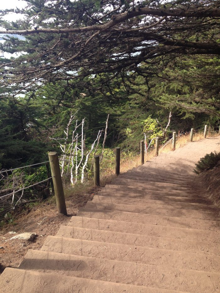 Follow the sign leading you to Mile Rock Beach and descend the sandy stairs.