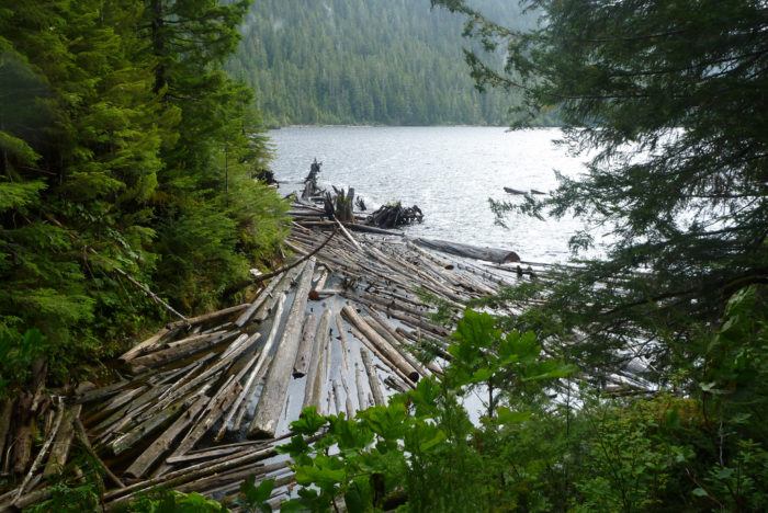 7. Connell Lake Trail – Ketchikan