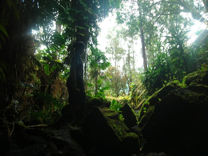 From Hilo, follow Highway 200 (Saddle Road) to the west, and stop between mile markers 4 and 5. Park on the south side of the road, cross the road, and drop into the collapsed skylight of the cave.