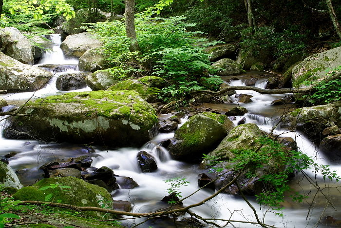The trail runs beside Keeney's Creek and Short Creek.