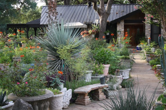 Enjoy the spacious campgrounds and verdant plants.