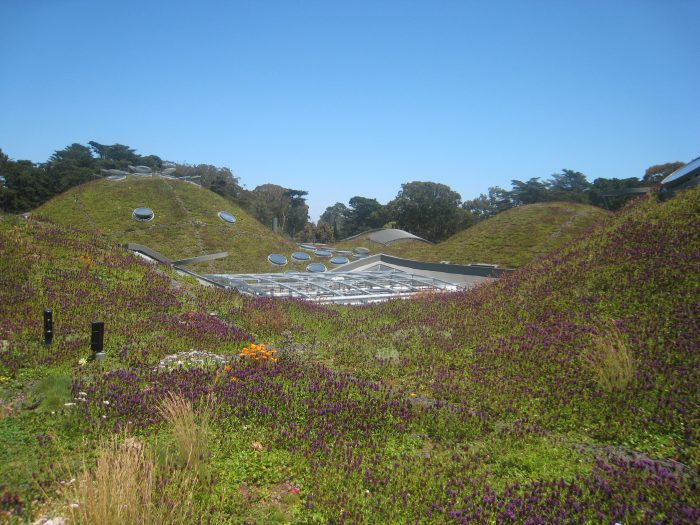 17. The Living Roof at the California Academy of Sciences