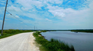 This Road In Louisiana Will Lead You To The Best Views On The Bayou