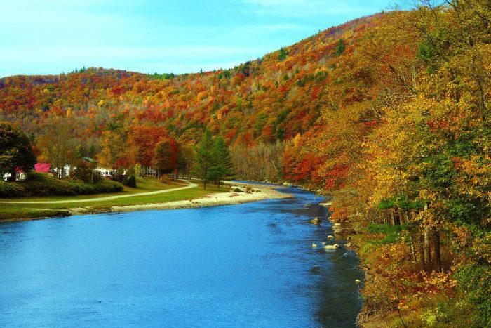 7. The fall foliage.
