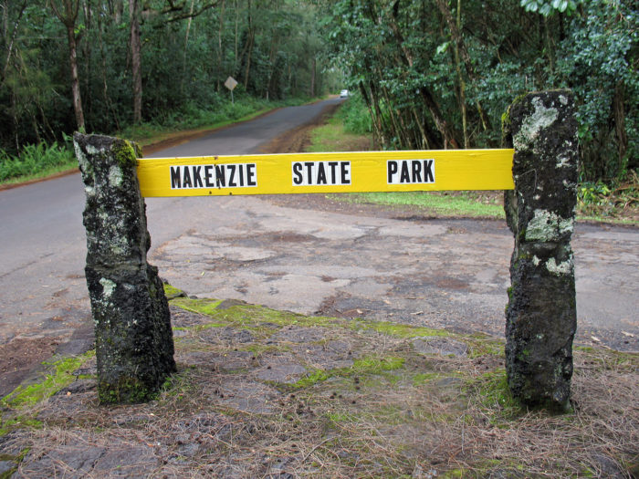 And the dark history gets even worse - MacKenzie State Park has also been the site of several gruesome murders, beatings, and rapes, including a gruesome beating death of an engaged couple who were camping in the park in 1980.