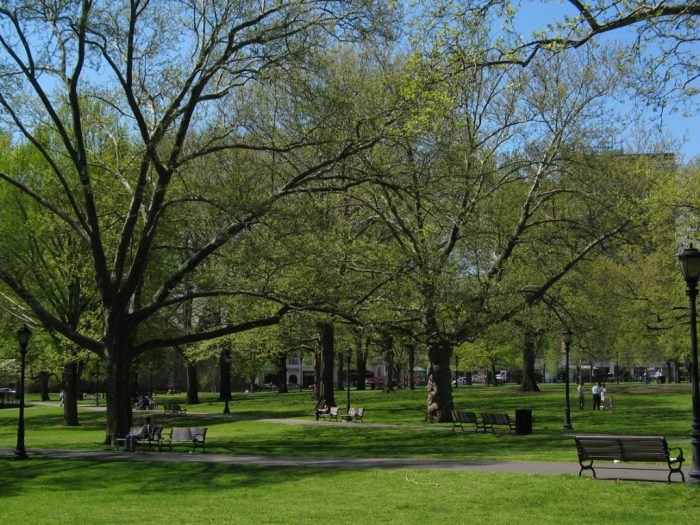 Have you ever been to the New Haven Green?