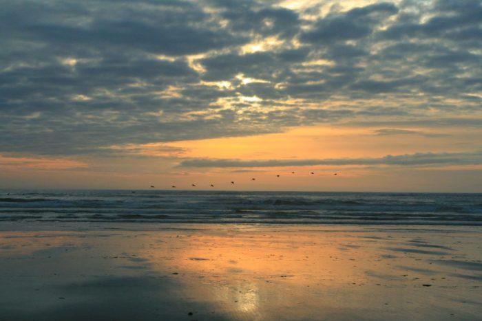 13. Ocean Shores