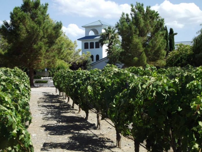 Nevada wineries and vineyards