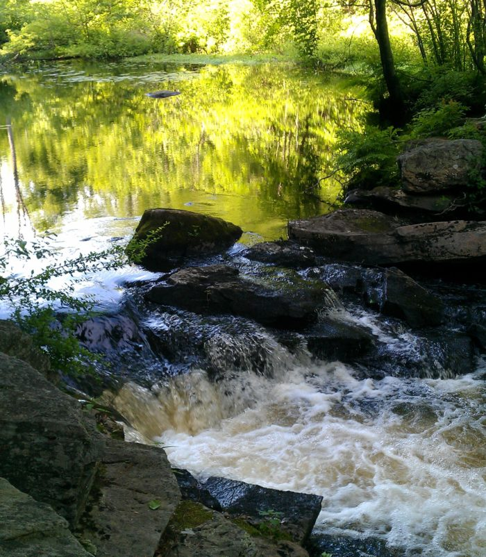 13. Papermill Trail
