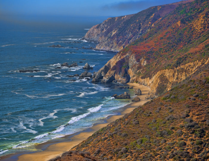 From San Francisco, drive north about 50 miles to Point Reyes National Seashore.