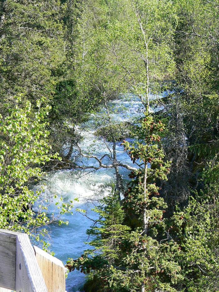 6. Russian River Falls – Cooper Landing