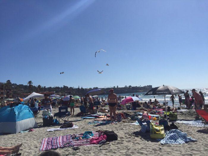1. La Jolla Shores