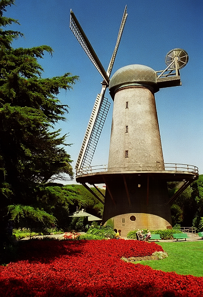 9. The Windmills at Golden Gate Park