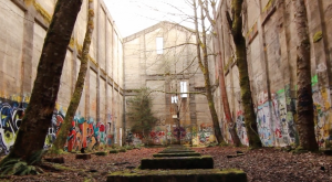 Nature Is Reclaiming This One Abandoned Oregon Spot And It's Actually Amazing