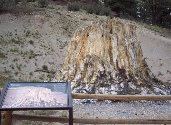 1. Florissant Fossil Beds National Monument (Florissant)