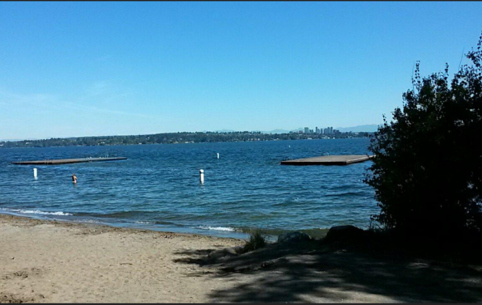 5. Swim at Madrona Park Beach in Seattle.