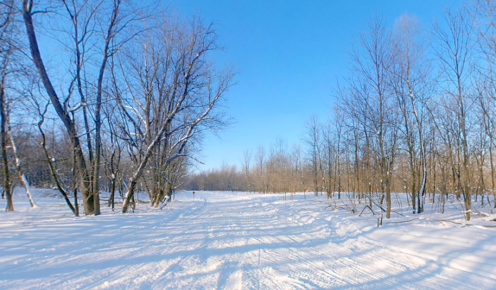And in the winter - enjoy some of the best skiing and snowshoeing in the Twin Cities.