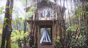 There's One Awesome Reason Why You'll Want To Build A Tiny House In Hawaii