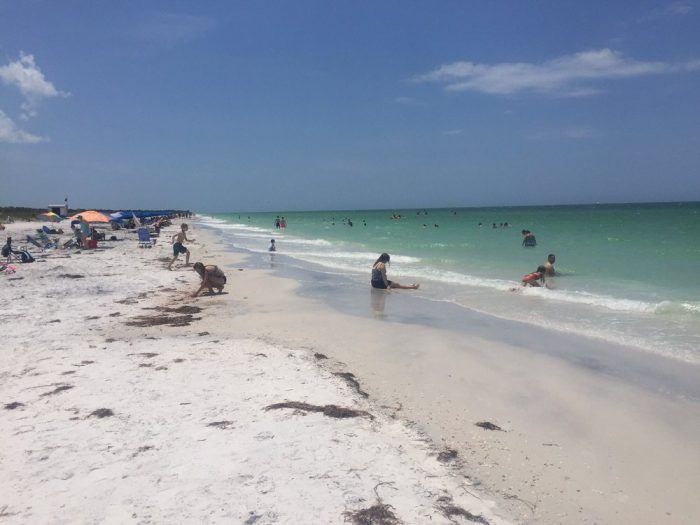 Beaches tampa pornstar picture 51