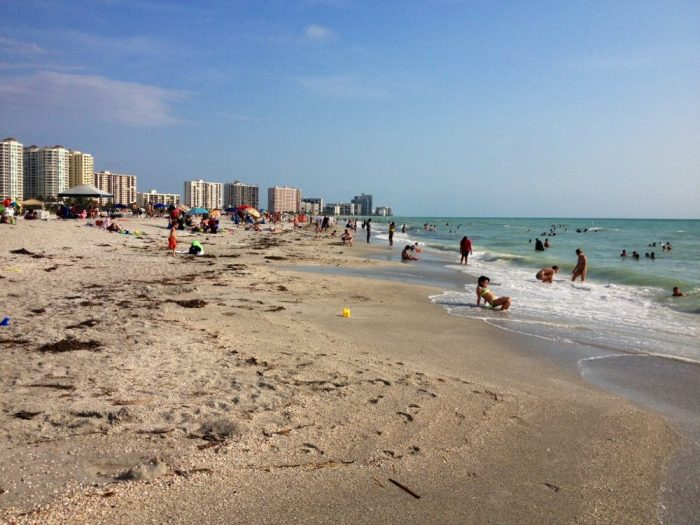 Best Beaches Near Tampa For Families
