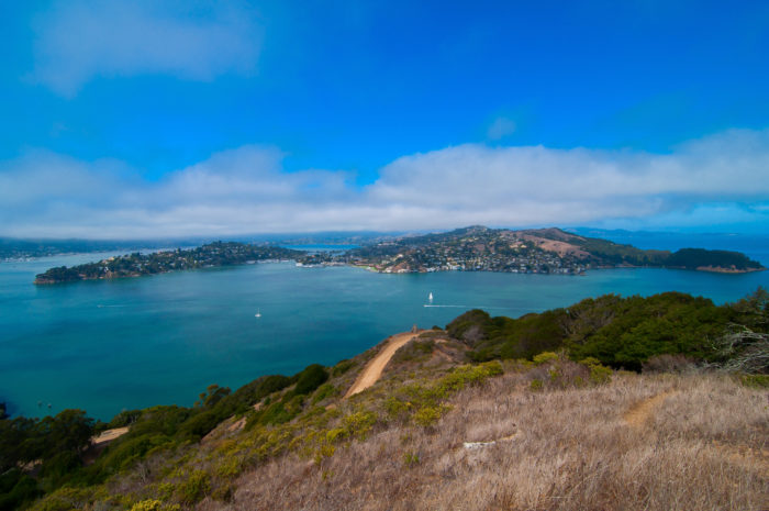 On the other side, get a look at Tiburon, the quaint Marin town that's just a quick 12-minute ferry ride away.