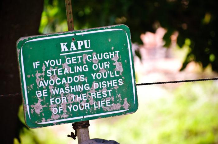 8. Kapu means forbidden.