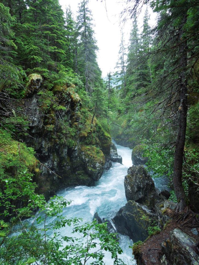12. Winner Creek Trail – Girdwood