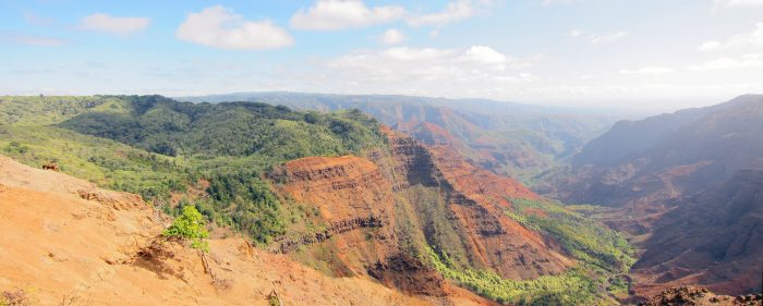 Since then, rainwater from the slopes of Mount Wai'ale'ale - one of the wettest spots on earth - has eroded the canyon along one edge of the collapse; the cliff walls on the east side of the canyon are built from thick lava flows that pooled in the depression.