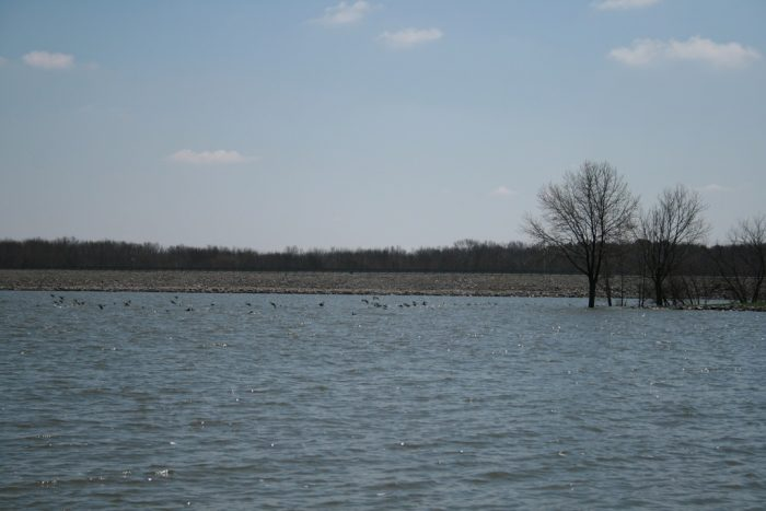 Top illinois summer attractions for Fishing lakes in illinois