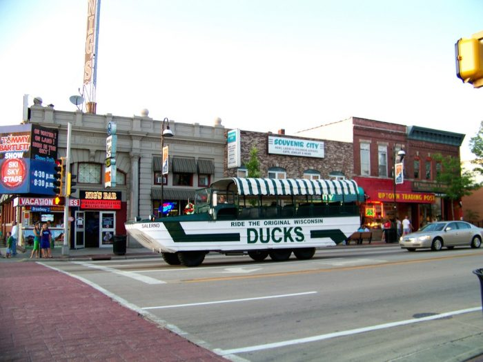 5. Ducks Tour