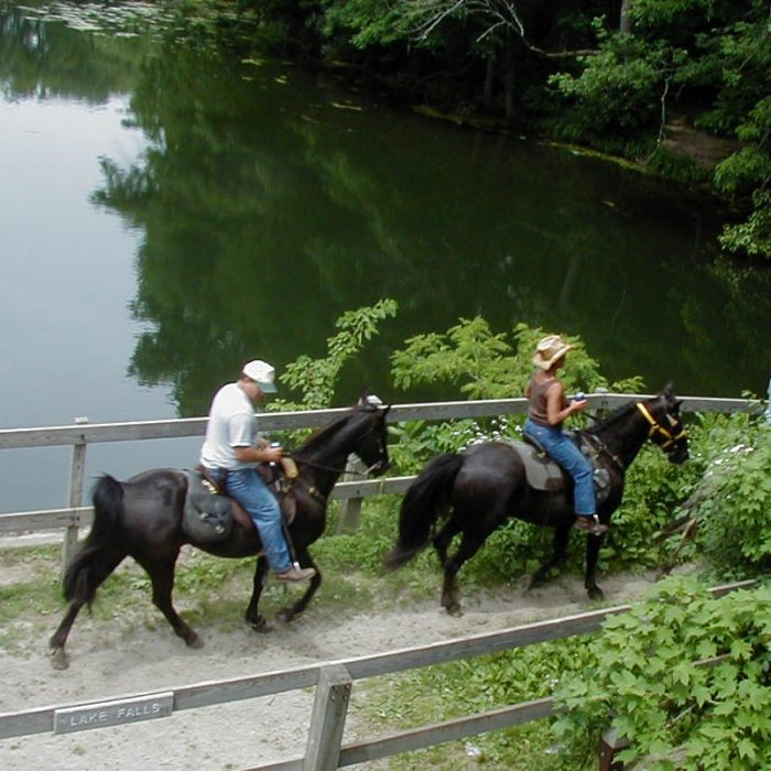 2. There are 9 miles of trails for horseback riding, and even an equestrian campground.