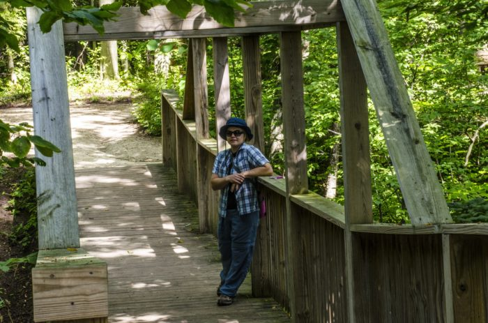 5. There are boardwalks that go through gorgeous wetlands.