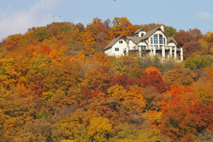 9. No state looks better than Illinois in the fall.