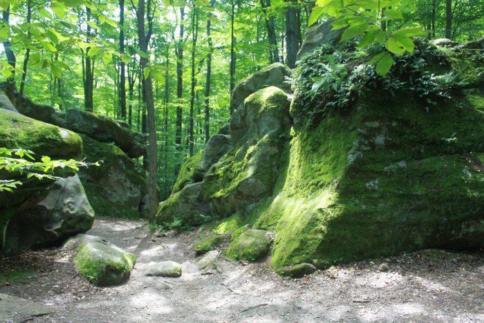 5. Allegany State Park Thunder Rocks