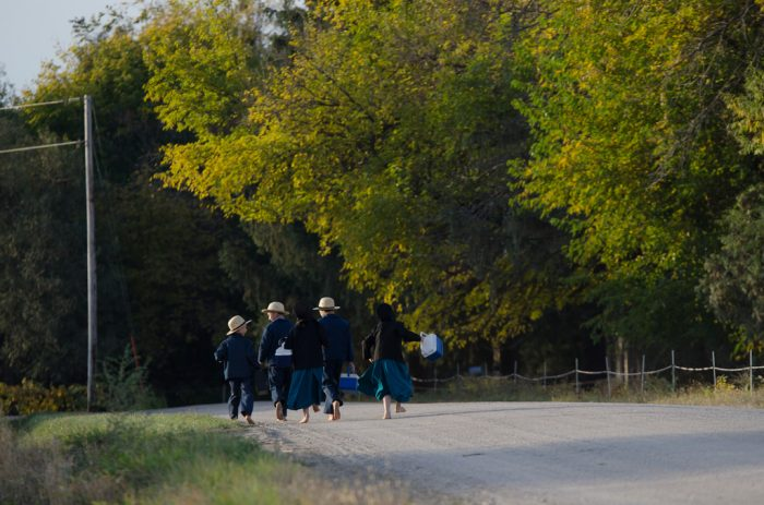 9. Amish By-Ways Tour, Kalona