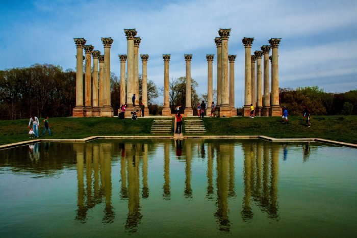 The Capitol Columns are a crowning achievement at the Arboretum.